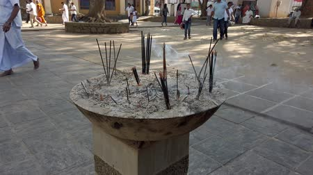 aromatik : Kandy, Sri Lanka - 09-03-24 - Bowl of Buddhist Incense Sticks Burn - Low Angle. Stok Video
