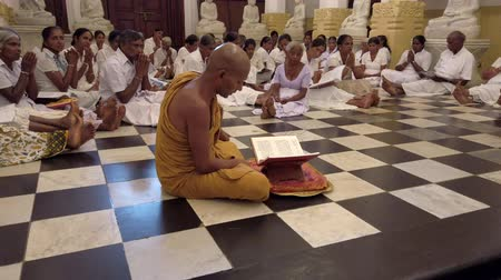 moine : Kandy, Sri Lanka - 09-03-24 - Monk Leads Dozens of People Sitting on Floor in Prayer 3 - Side of Monk Close. Vidéos Libres De Droits