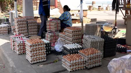 batatas : Chiang Saen, Thailand - 2019-03-10 - Woman Sits Among Egg Crates at Market. Stock Footage