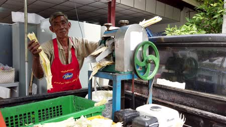 kutuları : Bangkok, Thailand - 2019-03-17 - Man Uses Machine To Squeeze Sugar From Sugar Cane. Stok Video