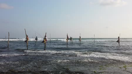 fisherman : Galle, Sri Lanka - 2019-04-01 - Stilt Fishermen - Seven Men Fishing.
