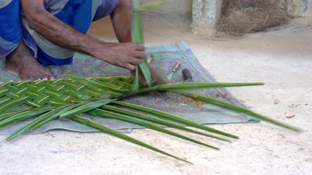 törzsi : Galle, Sri Lanka - 2019-04-01 - Thatch -  Man Demonstrates How to Weave Leaves for Roof Closeup.