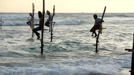 fisherman : Galle, Sri Lanka - 2019-04-01 - Stilt Fishermen - Four Men Low View.