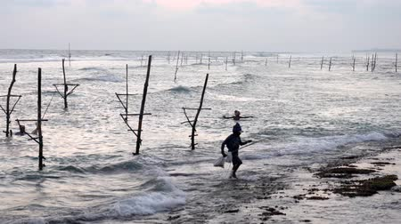 fisherman : Galle, Sri Lanka - 2019-04-01 - Stilt Fishermen - All Men Come to Shore at End of Day.