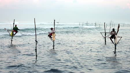 fisherman : Galle, Sri Lanka - 2019-04-01 - Stilt Fishermen - Three Men.