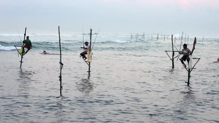 fisherman : Galle, Sri Lanka - 2019-04-01 - Stilt Fishermen - Two Surfers Swim Out Past Fishermen. Stock Footage