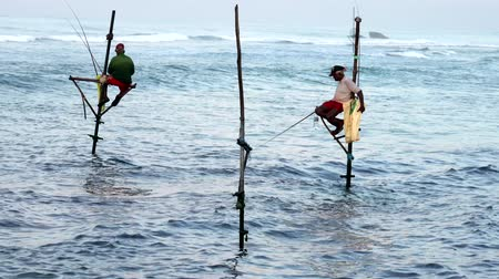fisherman : Galle, Sri Lanka - 2019-04-01 - Stilt Fishermen - Two Men. Stock Footage