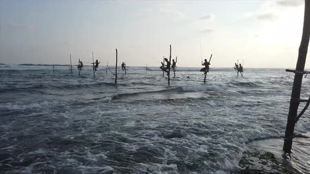 위치 : 갈레, 스리랑카-2019-04-01-Stilt Fishermen-Nine Men Close Together. 무비클립