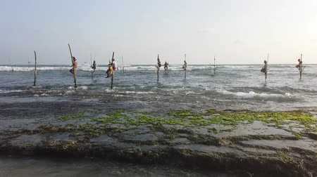 fisherman : Galle, Sri Lanka - 2019-04-01 - Stilt Fishermen - Seven Men Close to Shore.