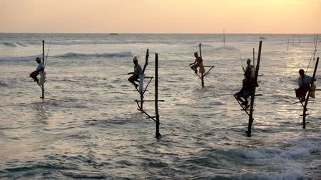 fisherman : Galle, Sri Lanka - 2019-04-01 - Stilt Fishermen - Six Men Twitch Poles.