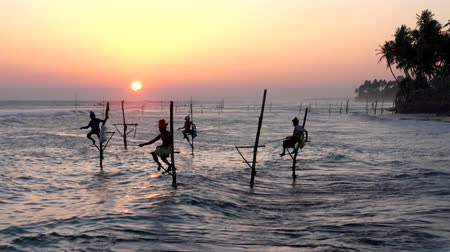 fisherman : Galle, Sri Lanka - 2019-04-01 - Stilt Fishermen - Four Near Shore.