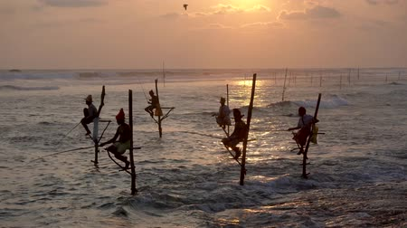 bennszülött : Galle, Sri Lanka - 2019-04-01 - Stilt Fishermen - Six at Sundown.