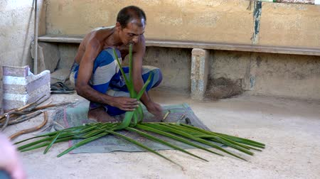 törzsi : Galle, Sri Lanka - 2019-04-01 - Thatch -  Man Demonstrates How to Weave Leaves for Roof. Stock mozgókép