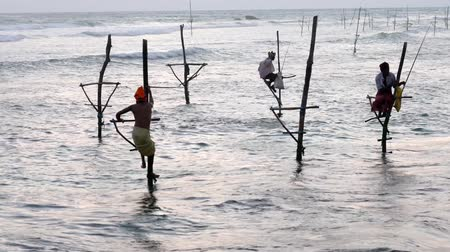 fisherman : Galle, Sri Lanka - 2019-04-01 - Stilt Fishermen - Man Climbs Off Stand. Stock Footage