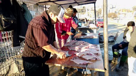 fisherman : Vina del Mar, Chile - 2019-07-27 - Three Fishermen Work To Turn 100s of Reine Fish Into Filets.
