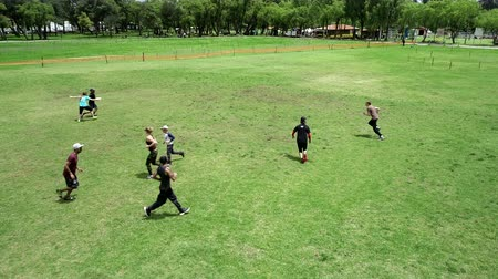 gepensioneerd : Cuenca, Ecuador - 2019-02-10 - Pickup Extreme Frisbee in Park - Aerial View Passes. Stockvideo