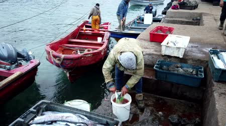 Fishing Boat Leaves Pier As Man Cleans Recently Caught Fish. Stock mozgókép