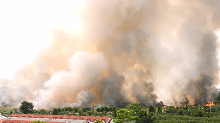 yerleşim : Stock Photo - Forest fires in the city, causing a large flame and smoke in the air is very hot days Firemen rush to help prevent the spread of fire to the village , In Thailand Stok Video