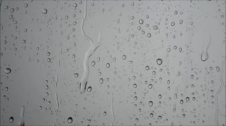 rega : Raindrops slowly flowing on a glass