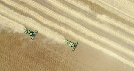 Two modern combine harvester working on the wheat crop. Aerial view.