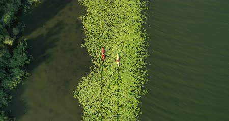 Two kayaks are sailing along a scenic river. Aerial view. Stok Video