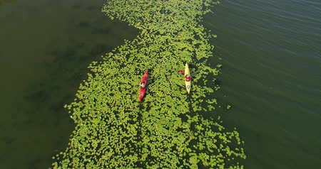 каноэ : Two kayaks are sailing along a scenic river. Aerial view. Стоковые видеозаписи