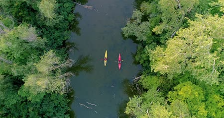 kürek çekme : Two kayaks are sailing along a scenic river. Aerial view. Stok Video