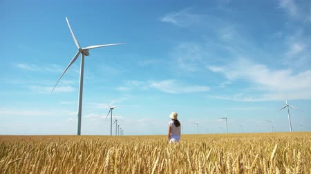 recursos : girl on yellow field of wheat with windmills