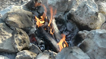 wilderness : Bonfire in a camp-fire of stones outdoors