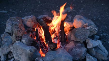 wilderness : Bonfire in a camp-fire of stones outdoors at dusk Stock Footage
