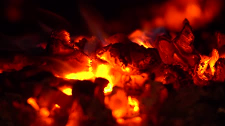 Burning fire with hot coals close up Dostupné videozáznamy