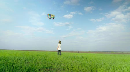 infantil : Little girl playing with a kite on a green field