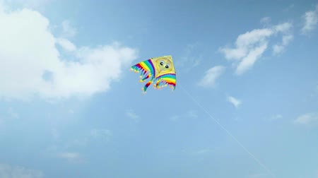 Colorful kite flying against the blue sky