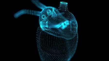 kardiyoloji : Seamless looping motion animated of human heart. Glowing blue light particles point of human heart model.