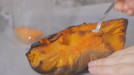 kitchen blender : Homemade pumpkin puree made of baked organic pumpkin. Stock Footage