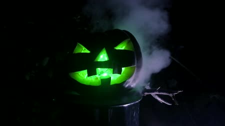 tűz : Pumpkin with green eyes in dark forest. Halloween Horror Scene