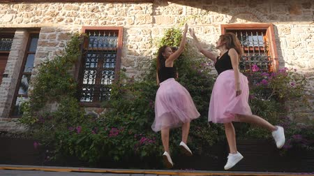koketa : Fashion lifestyle two young happy pretty women in pink tulle skirt funnily meet each other