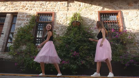 metáfora : Fashion lifestyle two young happy pretty women in pink tulle skirt funnily meet each other