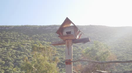 szpak : Handmaded nesting box on the post with mountains on background. Sunlights blind camera Wideo