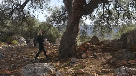 tribù : Hiker woman with backpack walking along the field strewn with small stones and hug a big old tree in forest