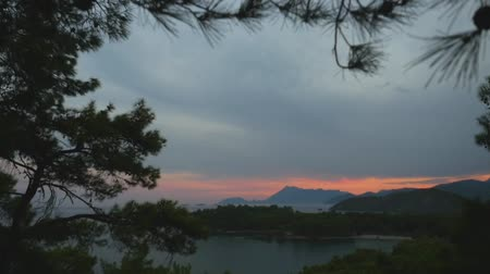 lagos : Beatuful sea view through the pine trees branches at sunset. Paradise place for summer vacation in Mediterranean sea. Stock Footage