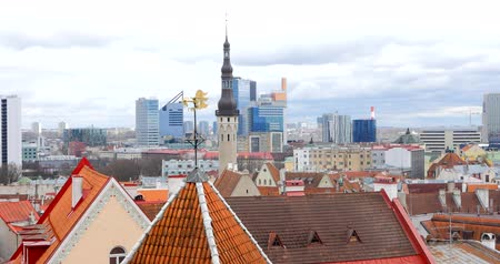 バルト : Beautiful spring view of Tallinn city on the background. April 2018.