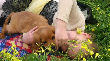 spanyel : Pretty caucasian girl laying on green grass and caressing cocker spaniel puppy