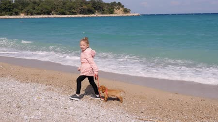 規律 : Little girl walking her cocker spaniel puppy on the leash by the seaside