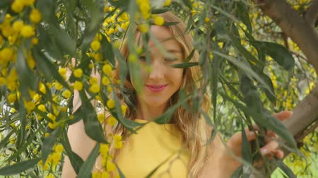 нежный : Portrait of young beautiful smiling woman with long blond hair in yellow dress standing under spring Australian Golden wattle tree in spring garden. Стоковые видеозаписи