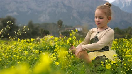 spanyel : Pretty caucasian girl sitting in the field with yellow flowers and playing with cocker spaniel puppy