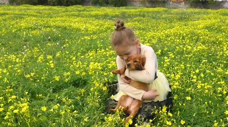 spanyel : Pretty caucasian girl playing on green grass with cocker spaniel puppy