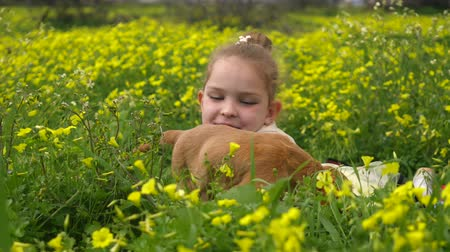 во : Beautiful caucasian girl laying in the field with yellow flowers and playing with cocker spaniel puppy Стоковые видеозаписи