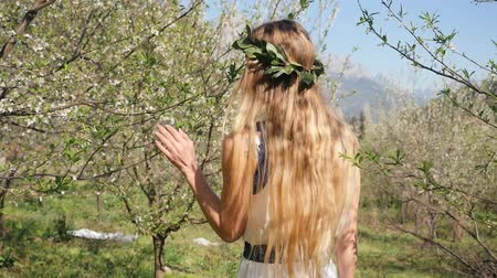 prune : Young beautiful caucasian woman in long dress in bay leaf wreath walking dreamily in spring blossom plum garden. BAckside view then turn and looks at camera
