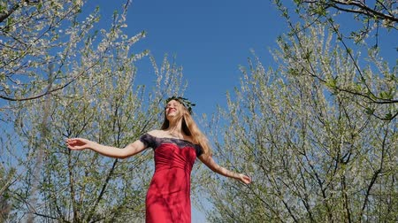 prune : Young beautiful caucasian woman in long red dress in bay leaf wreath whirls in spring blossom plum garden. Slow motion